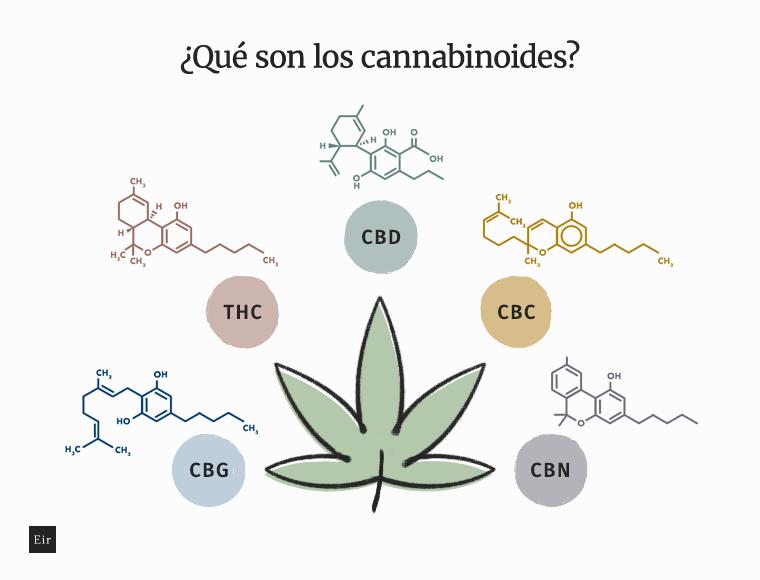 Cannabinoides: CBn, CBC, CBG, THC, CBD