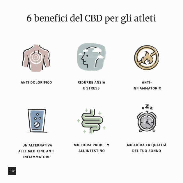 6 benefici del CBD per gli atleti: anti dolorifico, ridurre ansia e stress, anti-infiammatorio, un'alternativa alle medicine anti-infiammatorie, migliora problem all'intestin, migliora la qualità del tuo sonno